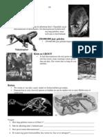 Dinosaur Us Lessen