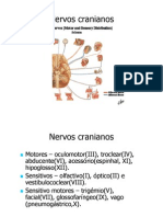 Aula Nervos Cranianos