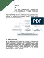 CONSTITUCION PODER PUBLICO