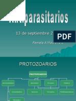 Antiparasitarios130907