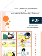 Basic Cardiac Life Support