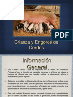 Presentacion CTCCerdos