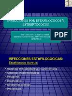 1 estafilococos y estreptococos