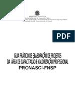GUIA  ORIENTAÇÃO ELABORAÇÃO DE PROJETOS PRONASCI