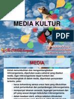 Jenis Media Kultur_2011