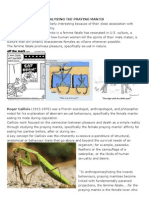 Analysing the Praying Mantis