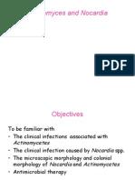 Actinomyces & Nocardia 06-07-Med