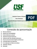Biomassa-Seminario Problemas e Soluções