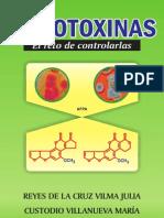 correccion de mitocoxinas1
