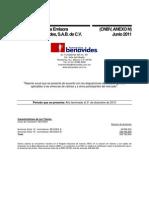 Informe 2010 Benavides