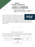 Selección de Lecturas Unidad 2 - Mat -CIU Expresiones