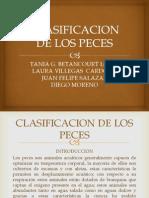 Clasificación Taxonómica I