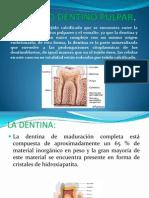Oscar Alfaro-Endodoncia-Organo Dentino Pulpar