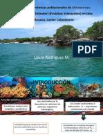 Parámetros y dinámicas poblacionales de Montastraea faveolata (