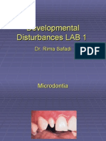 Lab 1 Developmental Disturbances (slide)