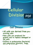 Cell Division & Cell Cycle