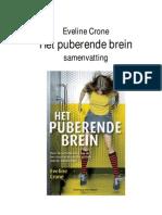 Eveline Crone - Het Puberende Brein Sam en Vatting)