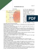 Gas respiratori, rapporto tra ventilazione e perfusione