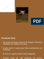 Historico_Raças_Cruzamentos_Planejamento