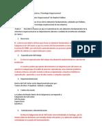 Guía de Trabajo Nº2