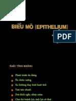 06.ĐC.Biểu mô và Da.Xg