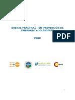 Peru - Informe BP Editado 2010