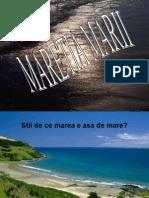Maretia_marii