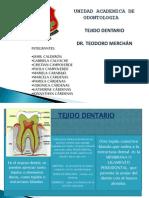 Tejido Dentario