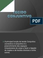 Tecido Conjuntivo (1)