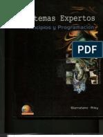 Sistemas_Expertos_-_Capitulo_1