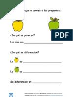 Semejanzas_y_diferencias