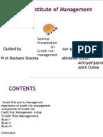 Credit Risk Management (1)