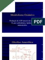 Metaboxidativo