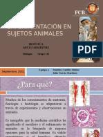 Experimentación en Sujetos Animales