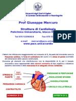 AAA C di L 05 Cardiopatia Ischemica Principi di terapia antischemica