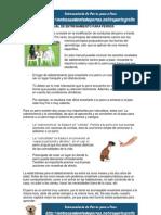 Manual de Entrenamiento Para Perros