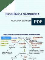 BIOQUIMICA SANGUINEA