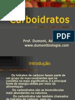 Carboidratos