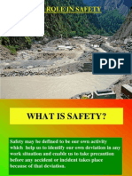 Engineers Role in Safety