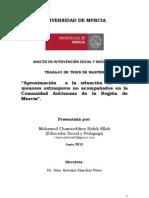 Tesis de Master. Aproximación a la situación de los menores extranjeros no acompañados en la Región de Murcia. Autor. Mohamed Chamseddine Habib Allah