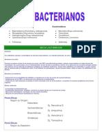 Anti Bacteria Nos