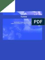 Tunisia :Rapporti paese congiunti ambasciate/consolati- uffici ice all'estero