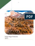 Flora Del Famatina
