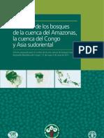 Situacion de los Bosques de La Cuenca Amazonas la cuenca del Congo y Asia sudoriental