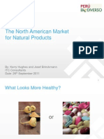 US_Market Brief 2011 Presentation (Josef Brinckman)