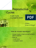 Viral Reproductive Cycles II-Dahlia