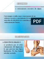 ESGUINCE patologia2003
