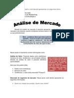 ORIENTAÇÕES_-_Análise_de_Mercado_-_Planejamento_Estr__ategico(2)