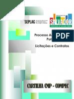 cartilha_processo_adm_punitivo[1]