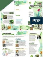 BDP - Modèle Plaquette Qu%27est ce que la permaculture %3F Juin 2011